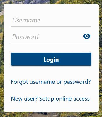 Should You Create a TransAction Portal Account