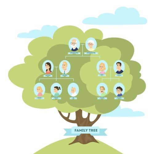 DNA Testing and Family Trees