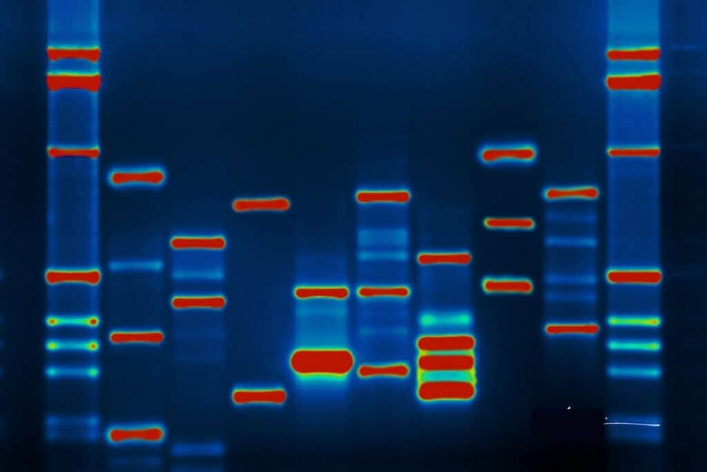 How to Extract DNA from a Fingerprint