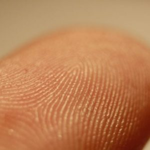 Guide to DNA Fingerprinting