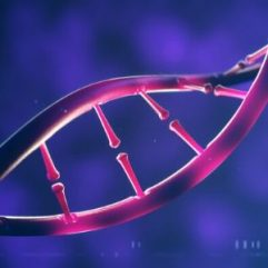 Helix-DNA-Review-feature-image