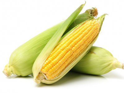 Nutrition Testing with Helix DNA - Corn