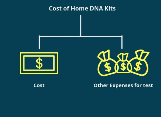 The Ultimate Beginner_s Guide to Genealogy - Cost of home DNA kits