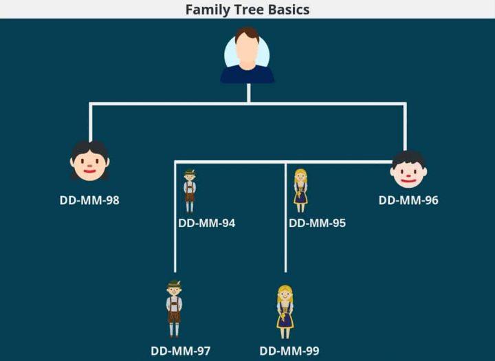 The Ultimate Beginner_s Guide to Genealogy- Family Tree Basics